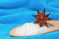Sea salt bath with a star anise Royalty Free Stock Images