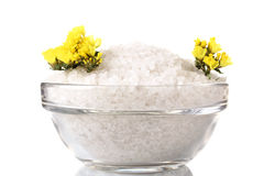 Sea salt in a bowl Royalty Free Stock Photo