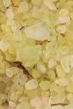 Sea salt bright chartreuse Stock Image