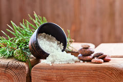 Sea salt with coniferous aroma Royalty Free Stock Photo