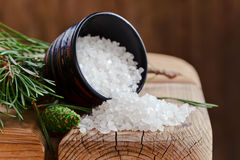 Sea salt with coniferous aroma Royalty Free Stock Images