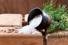 Sea salt with coniferous aroma Stock Photography