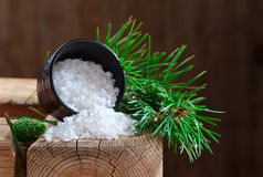 Sea salt with coniferous aroma Royalty Free Stock Photography