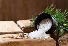 Sea salt with coniferous aroma Royalty Free Stock Photos