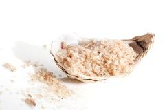 Sea salt crystals in seashell. Stock Photos