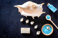 Sea salt from dead sea and shell in cosmetics set for spa on dark background top view copyspace Royalty Free Stock Photography
