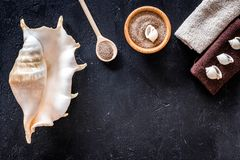 Sea salt from dead sea and shell in cosmetics set for spa on dark background top view copyspace Stock Photo