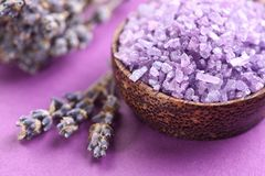 Sea-salt and dried lavender Royalty Free Stock Photos