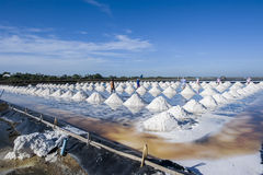 Sea salt field. People working at sea salt field in Thailand stock photography