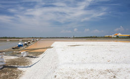 Sea salt field. Showing the orange water before hydrate and become salt in Thailand royalty free stock images