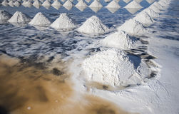 Sea salt field. In Thailand stock photography
