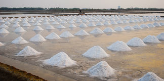 Sea salt field. In Thailand on sun sets royalty free stock image