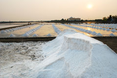 Sea salt field. In Thailand on sun sets royalty free stock photo