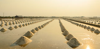 Sea salt field Stock Images