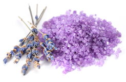 Sea salt flavored with dried lavender flowers. Royalty Free Stock Photo