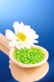 sea salt and flower Stock Images