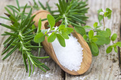 Sea salt and fresh herbs Stock Image