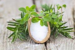 Sea salt and fresh herbs Stock Image