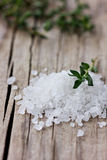 Sea salt with a fresh herbs thyme Stock Images