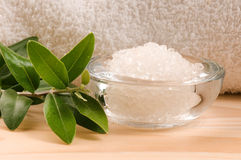 Sea Salt With Fresh Olive Branch Royalty Free Stock Photography