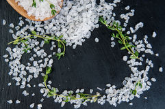 Sea salt and fresh thyme herb on wooden spoon over slate background stock photography