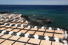 Sea salt harvesting at La Palma, Canary Islands Stock Images