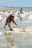 Sea salt harvesting Royalty Free Stock Image