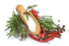 Sea salt with herbs Stock Photos