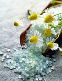 Sea salt with herbs Royalty Free Stock Photography
