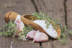 Sea salt with herbs and garlic Royalty Free Stock Photography