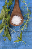 Sea salt with herbs in a spoon Royalty Free Stock Photos