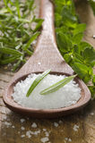 Sea salt with herbs in a spoon Royalty Free Stock Image