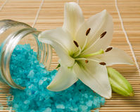 Sea salt and lily Stock Photo