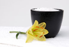 Sea Salt and a Lily. A yellow lily next to a bowl of sea salt Stock Images