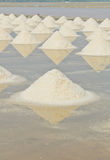 Sea salt mounds Royalty Free Stock Photos