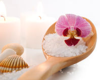 Sea salt with orchid Stock Photo