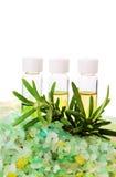 Sea salt  and organic oil Stock Image