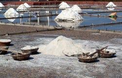 Sea Salt Paddies Royalty Free Stock Image