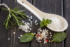 Sea salt ,pepper,scented herb rosemary and mint leaves on wooden Royalty Free Stock Photo