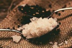 Sea salt and peppercorn Stock Image