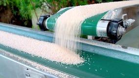 Conveyor belt with salt. stock footage