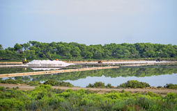 Sea salt production. Royalty Free Stock Photo