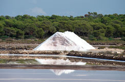 Sea salt production. Royalty Free Stock Photography