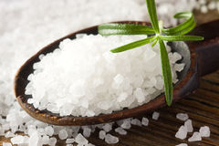 Sea salt and rosemary Royalty Free Stock Images