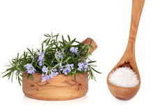 Sea Salt and Rosemary Herb stock image