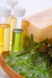 Sea salt with rosemary and organic oil Stock Photos