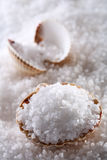 Sea salt in sea shell on salts background Stock Image