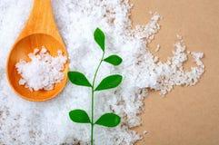 Free Sea Salt, Seasoning, Bay Salt, Solar Salt Royalty Free Stock Image - 33008736