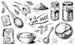 Sea salt set. Glass bottles, packaging and and leaves, wooden spoons, powdered powder, spice in the hand. Vintage