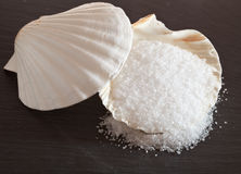 Sea salt in shell Stock Images